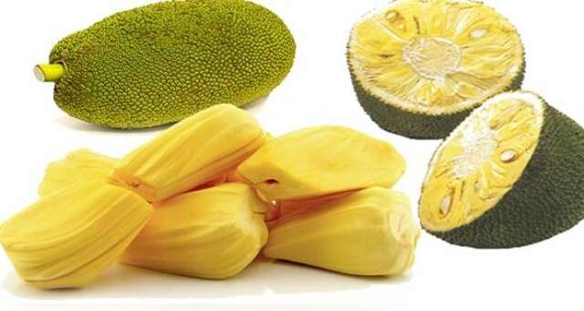 Protein-Rich Jackfruit, use as a vegan meat