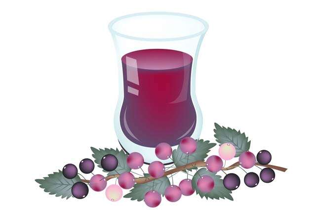 Falsa, a fruit that have lots of benefits