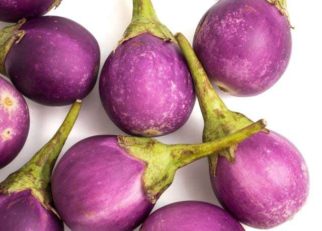 How many types of eggplant do you know?