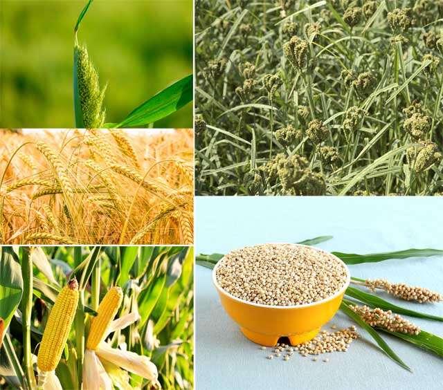 benefits of coarse grains