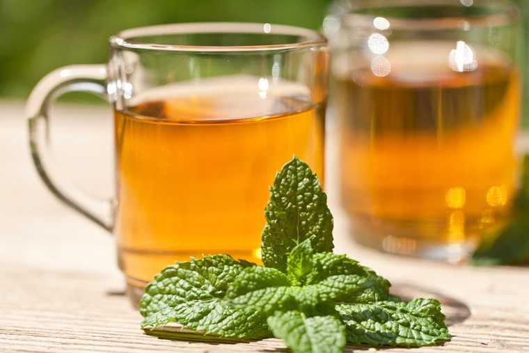 Peppermint tea to lose weight