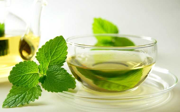 Mint and green tea