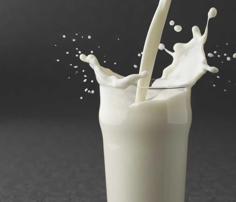 milk ice