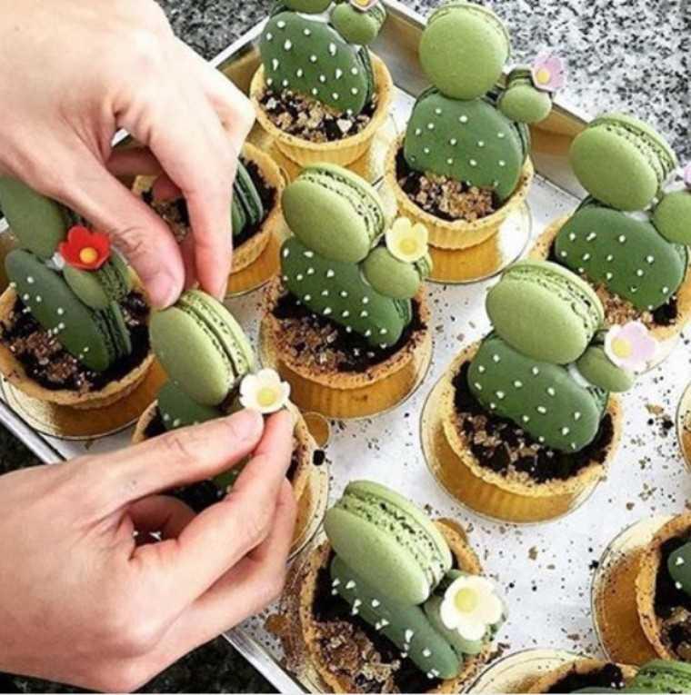cacti macaron tarts