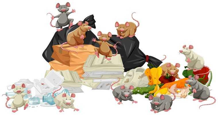mice-free