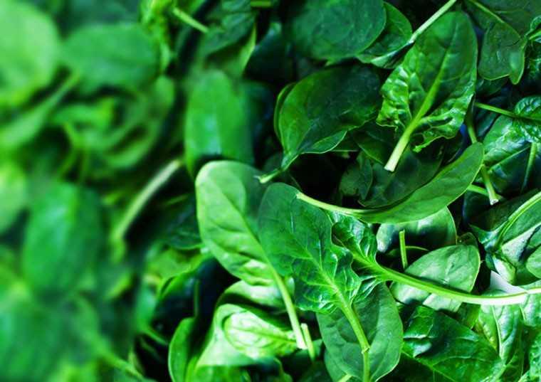 Dark, green leafy vegetables