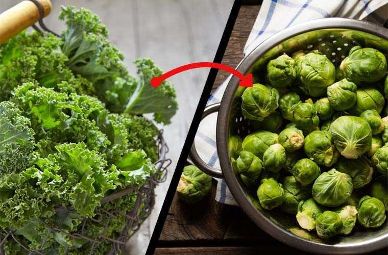 Kale, Cauliflower or Brussels sprouts